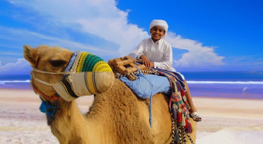النشاط السياحي بمدينة مسيعيد قطر