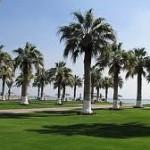مدينة مسيعيد قطر المدينة الصناعية القطرية
